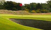 DLF to exhibit at BTME, Red Zone Stand 214